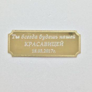 plastina-s-frazoy
