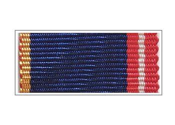 Орденская планка ФСО «За воинскую доблесть»