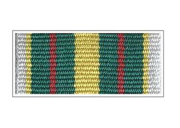 Лента медали «25 лет Федеральной таможенной службе»