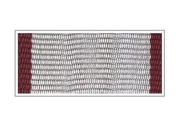 Лента Медаль «За спасение погибавших»