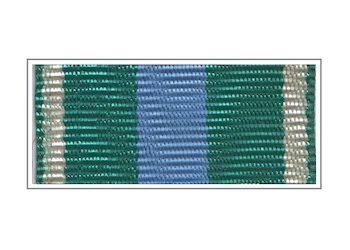Орденская планка «За укрепление таможенного содружества»