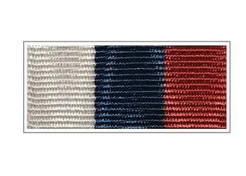 Лента Медаль «За заслуги в переписи населения»