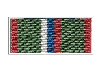 Лента медали «Защитник границ Отечества»