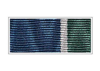 Орденская планка и колодка «За верность десантному братству»