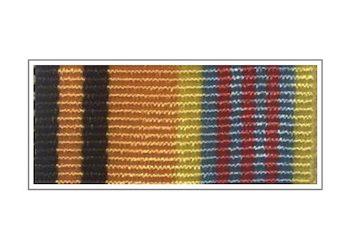 Орденская планка «100 лет штурманской службе Военно-Воздушных Сил»